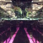横浜キャバクラ「グランビル」のバイト体入はこちら