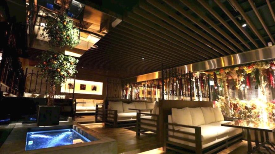 高級キャバクラ「歌舞伎町オレンジテラス」のバイト求人